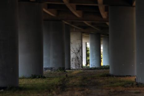 Tilt shift under the freeway.